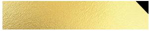 camillalashes.com Logo
